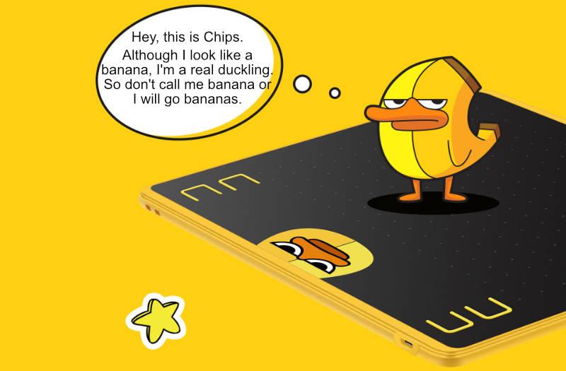 Chips on HS64 SE